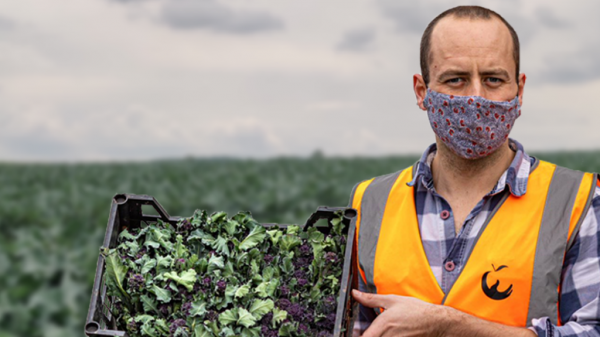 FareShare demands govt to extend £5m food waste funding with new campaign
