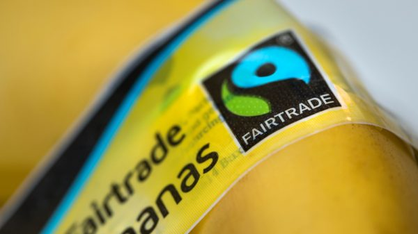 Fairtrade farmers urge world leaders to keep their climate promises